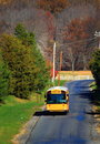 School Bus on Road Royalty Free Stock Photo