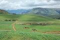 Rural settlement Royalty Free Stock Photo