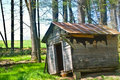 Rural Shack on Edge of Woods Royalty Free Stock Image