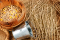 Rural still life metal bucket wooden tub with seeds and a little straw on sackcloth background Royalty Free Stock Photo