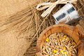 Rural still life metal bucket wooden tub with seeds and a little straw on sackcloth background Stock Image