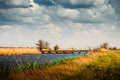 Rural summer landscape before the storm Stock Images