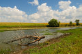 Rural summer river landscape with and clouds and grassy fields Royalty Free Stock Images