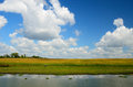 Rural summer river landscape with and clouds and grassy fields Stock Photos
