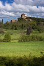 Rural tuscany ws italy landscapes wine vineyards olive groves green and blue Stock Photography