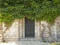 Rural vintage door wooden in stone wall with greenery Royalty Free Stock Photos