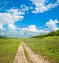 Rural way to horizon Royalty Free Stock Photo