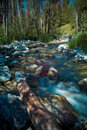 Rushing Mountain Stream Stock Photography