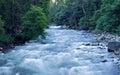 Rushing River Royalty Free Stock Photo