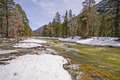 Rushing river with winter snowmelt the animas in colorado flowing fast winder Stock Image