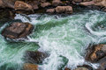 Rushing stream river water through eleven mile canyon colorado and small rapids over and around rocks in rocky beautiful spring Royalty Free Stock Photo