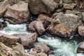 Rushing stream river water through eleven mile canyon colorado and small rapids over and around rocks in rocky beautiful spring Stock Image