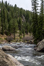 Rushing stream river water through Eleven Mile Canyon Colorado Royalty Free Stock Photo