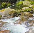 Rushing waters of a mountain stream Royalty Free Stock Photography