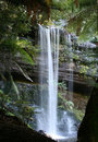 Russell Falls, Rain Forest Waterfall Royalty Free Stock Photography