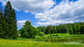 Russia. Pavlovsk Park in early June 2016 . A natural landscape. Royalty Free Stock Photo
