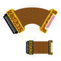 Russian accordion musical instrument. harmonic National folk ju