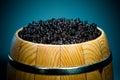 Russian Black Caviar Royalty Free Stock Photo