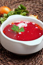 Russian borscht Royalty Free Stock Photography