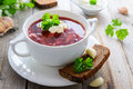 Russian cuisine - beetroot soup borshch Royalty Free Stock Photo