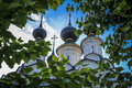 Russian domes view of through green leaves in suzdal russia Stock Images