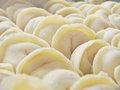 Russian food pelmeni meat within dough Stock Images