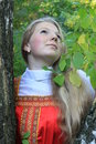 Russian girl birch Stock Images