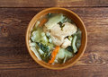 Russian national cabbage soup green sorrel stchi with nettles and rhubarb Stock Photography