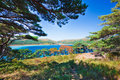 Russian primorye coastline coastal cedar Stock Photos