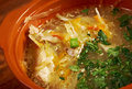 Russian sauerkraut soup stchi Royalty Free Stock Photo