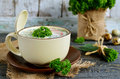 Russian spring and summer cold soup  with kefir Royalty Free Stock Photo
