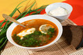 Russian traditional soup - solyanka Royalty Free Stock Photo