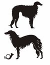 Russian wolfhound wolfhounds silhouettes and hunting horn Royalty Free Stock Images