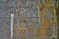 Rust graffiti on concrete wall Royalty Free Stock Photos