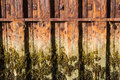 Rust iron girders forming part of harbour wall with seaweed and rusting interlocked that form water mark Royalty Free Stock Photos