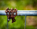 Rusted chains on galvanised gate Royalty Free Stock Photo