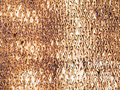 Rusted metal surface. Royalty Free Stock Images