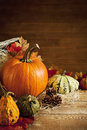 Rustic autumn still life with copy space Royalty Free Stock Photo