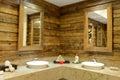 Rustic bathroom interior