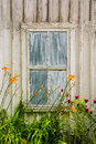 Rustic building with a weathered old window and  orange flowers in front, at taconic state park Royalty Free Stock Photo