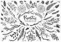 Rustic decorative plants and flowers collection. Hand drawn.