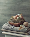 Rustic easter decoration with eggs and feathers Stock Photos