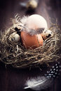 Rustic Easter Nest Stock Photos