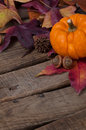 Rustic Fall Setting with Minature Pumpkin Stock Images