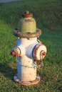 Rustic fire hydrant in early morning Royalty Free Stock Photography