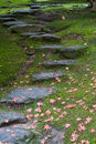Rustic rock steps Royalty Free Stock Photo