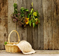 Rustic rural scene. Stock Photography