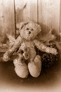Rustic sepia toned teddy bear rugged with fall flowers and leaves with pinecone on wooden background Royalty Free Stock Photography