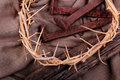 Rustic Spikes and a Crown of Thorns  Stock Photo