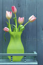 Rustic style still life composition green vase pink tulips against blue boarded background shelf rustic style Stock Photography